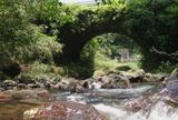 永久井野橋12