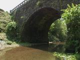 野之崎橋09
