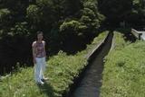 東方大丸太鼓橋11