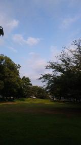 2011夏の公園
