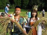 古代米の収穫H20①