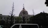 国会議事堂H20.4