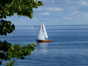 デンマーク ヨット 8月