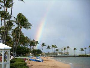 rainbow kahala web