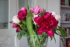 flowers-759584_1280