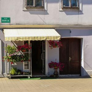 flower-store-527560_1920