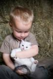 boy-and-kitten-1small