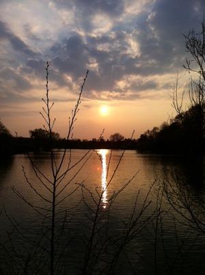 denmark sunset 4
