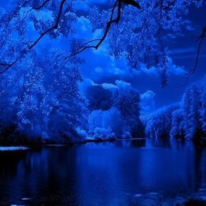 secret garden blue scene
