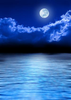 dreamstime_xs_15559178