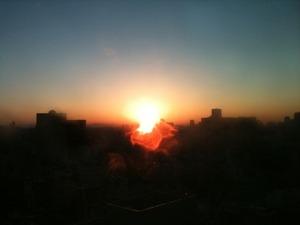 miyoko sunrise