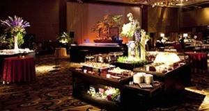 pro  ana hotel    party