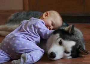 secret garden baby and dog