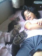 生後37日の子猫&亜美7歳