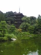 曇り空の中、瑠璃光寺