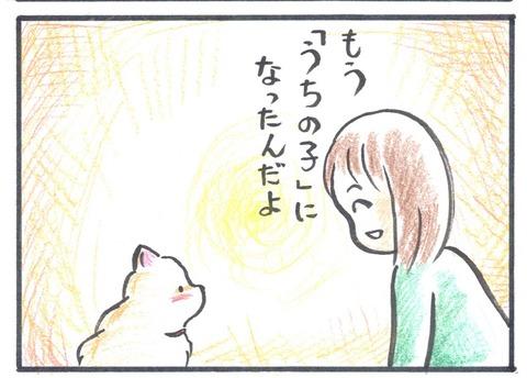 うちポメ3コマ漫画15burogu_edited-1