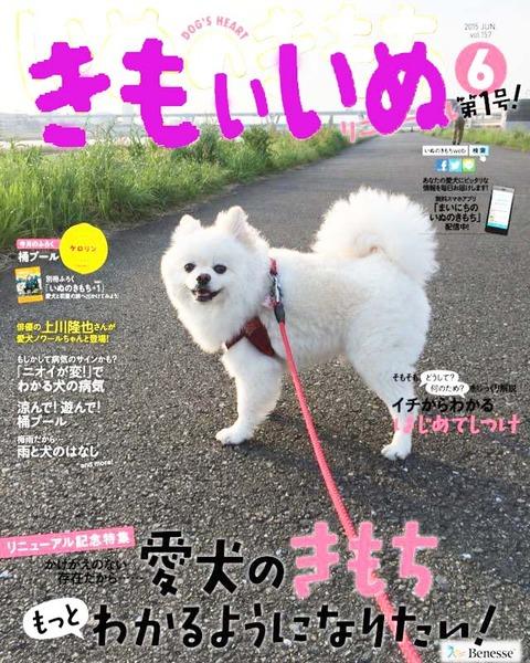 inukimoのコピー