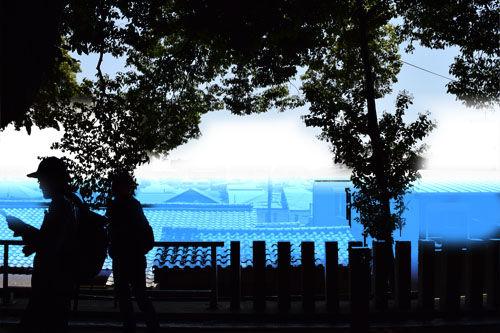 DSC_0509海