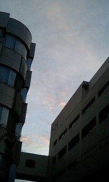 6fac6672.jpg