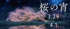 kochi_omote_th