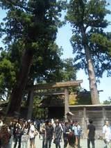 gaigu_shogu