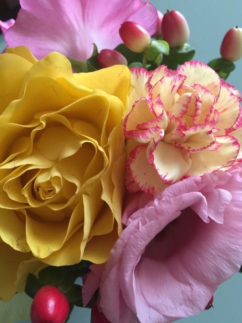 カササギ会の花