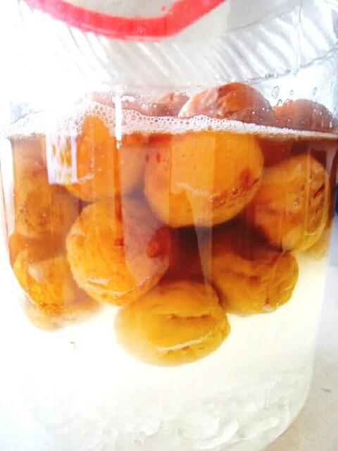 シロップ 発酵 したら 梅