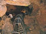 鍾乳洞 階段