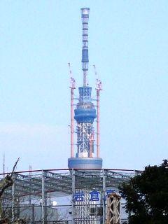 ueno 2011 4-3 010