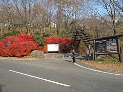 2009.11.29 弥護山 1 3