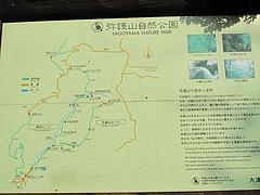 2009.11.29 弥護山 7