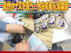 泉州水ナスを買う/水なす美人塾画像03 ▼クリックで640x480に画像拡大