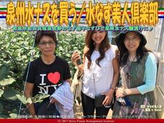 泉州水ナスを買う/水なす美人塾画像01 ▼クリックで640x480に画像拡大