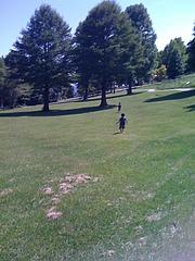 蒜山キャンプ場1