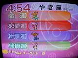 6091e6a1.JPG