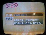 f5b479c3.JPG