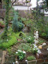 17 日の庭