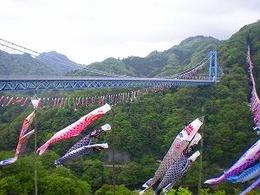 竜神橋鯉のぼり(小)
