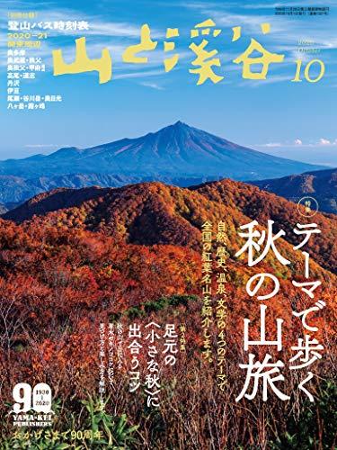 201106_山と渓谷