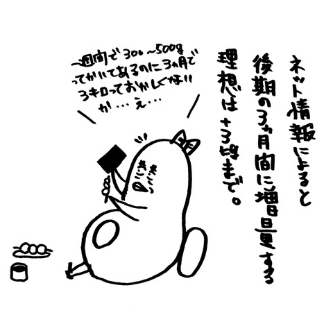 [画像:028a2971-s.jpg]