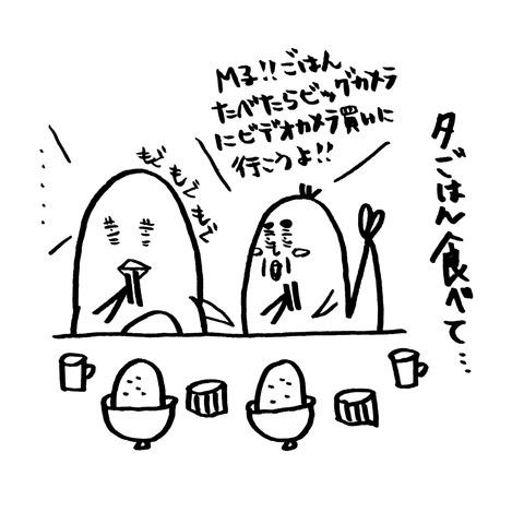 [画像:042c820d-s.jpg]