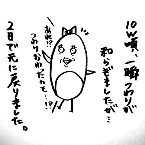 [画像:3fe1907a-s.jpg]
