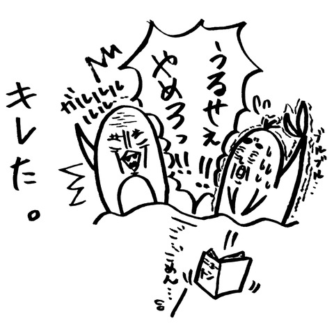 [画像:51dea592-s.jpg]