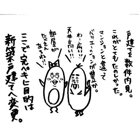 [画像:8f8e1405-s.jpg]