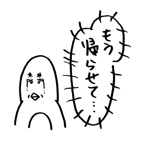 IMG_20171214_095851