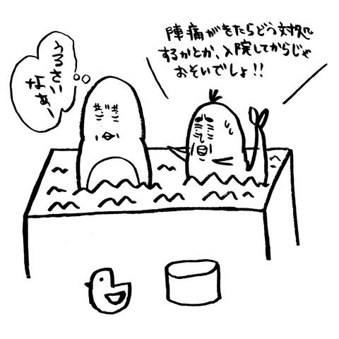 [画像:a219d901-s.jpg]