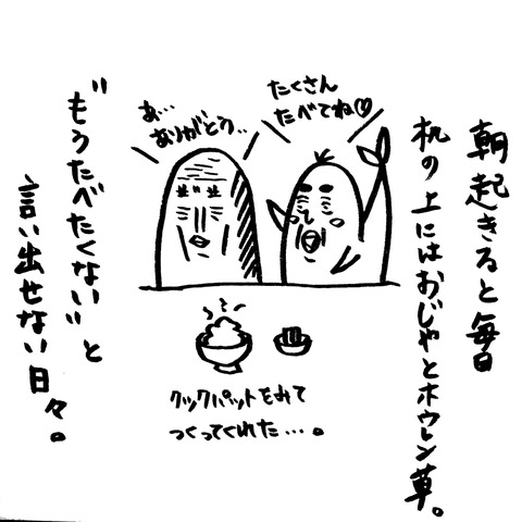 [画像:af936be3-s.jpg]