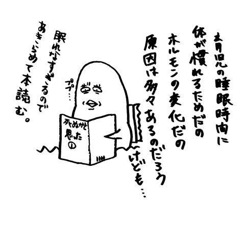 [画像:b31be946-s.jpg]
