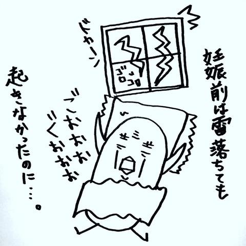 [画像:b973355f-s.jpg]