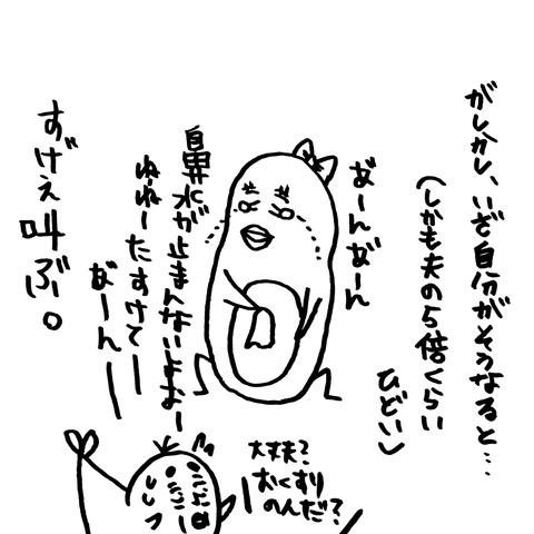 [画像:c12463cd-s.jpg]